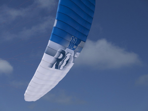 Ozone R1 11m Wing Tip